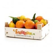 Naranjas/Mandarinas 15 kg
