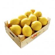 Limones - caja 5 kg