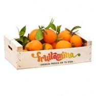 Naranjas Standard de mesa - 5 kg